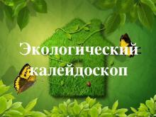 """Экологический калейдоскоп """"данный чудесный мир"""". Презентация игры по биологии """"экологический калейдоскоп"""" Игра экологический калейдоскоп для исходной школы"""