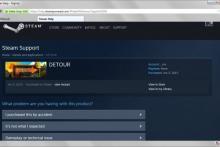 Можно ли вернуть деньги со стима. Как вернуть деньги за игру в Steam? Получаем деньги в стиме назад. Возвраты кошелька Steam