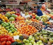 Какие овощи едят при похудении. Овощи для похудения и выведения жира. Самые полезные фрукты и овощи для здоровья