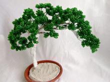 Дерево банзай из бисера схема. Разные варианты плетния из бисера дерева бонсай в мастер-классе. Материалы и техника
