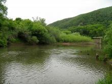 Схематически впадение реки илистая в ханку. Река Илистая (Лефу). Изложение гидрологических районов