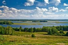 Презентация природные сообщества беларуси. Растительный и звериный мир беларуси. Березинский биосферный заповедник