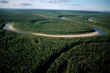 Природные зоны России и географическая оболочка Земли. Таблица природные зоны использование человеком