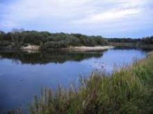 Река Мокша ее местонахождение и место среди рек России