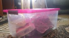 Сделать террариум своими руками из пластикового контейнера. Как самому сделать террариум для паука