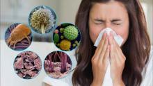 Аллергия на запахи растений