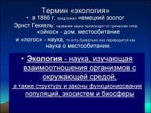 Основные термины по экологии для олимпиады. Экология: основные термины и представления. Науки и их объект изучения